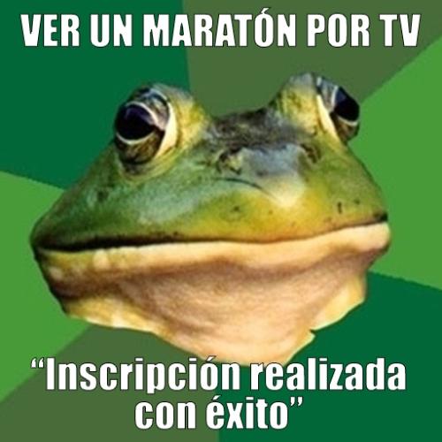 Bachelor frog runner