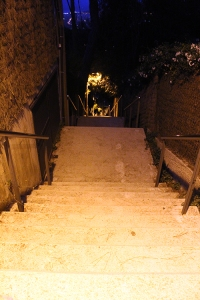 ESCALERAS MIDNIGHT TRAIL
