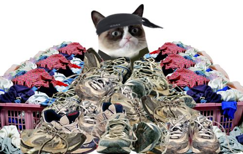 Grumpy Cat limpieza