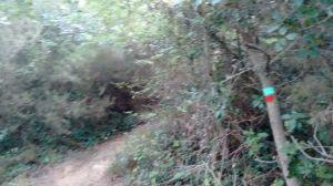 Señalización Matagalls Montserrat