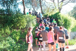 Salomon Run Barcelona 2017 (1403)