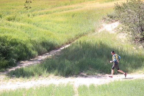 Tuga Trail (793)