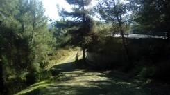 Cursa del Castell C (13)