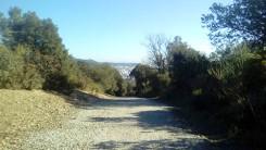 Cursa del Castell C (14)