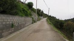 Montescatano (306)