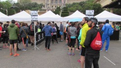 Salomon Run 2018 (2)
