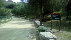 2 Pedres (4)
