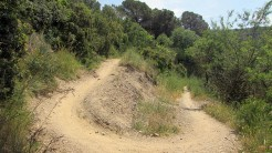 Cursa Ecologica a (62)
