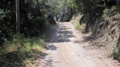 Cursa Ecologica a (68)