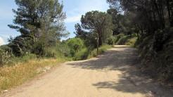 Cursa Ecologica a (71)