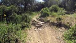 Cursa Ecologica c (6)