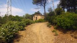 Cursa per Collserola Circuit (164)