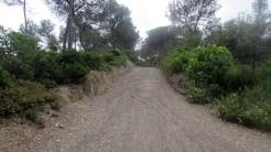 Cursa per Collserola Circuit (56)