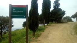 Dues pedres Castellar 1