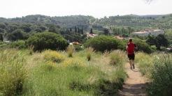 Vigía Trail (275)