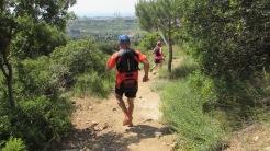 Vigía Trail (544)