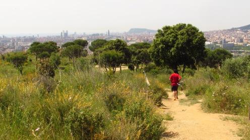 Vigía Trail (596)