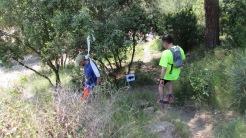 Vigía Trail (629)