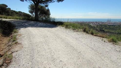 Vigia Trail (12)