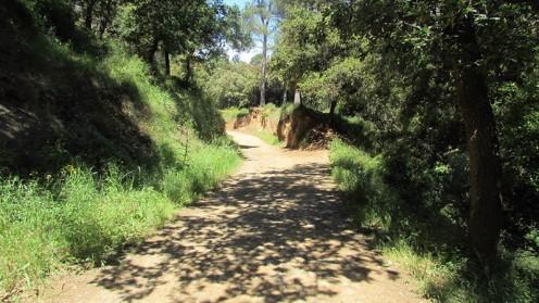 Vigia Trail (123)
