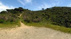 Vigia Trail (133)