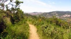 Vigia Trail (139)