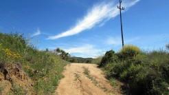 Vigia Trail (15)