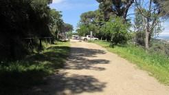 Vigia Trail (152)