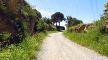 Vigia Trail (155)