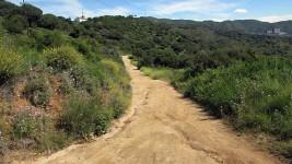 Vigia Trail (16)