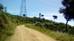 Vigia Trail (166)