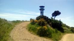 Vigia Trail (167)