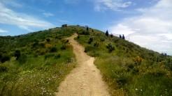 Vigia Trail (170)