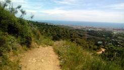Vigia Trail (172)
