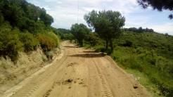 Vigia Trail (175)