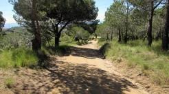 Vigia Trail (18)