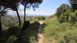 Vigia Trail (184)