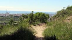 Vigia Trail (186)