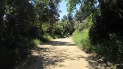 Vigia Trail (19)
