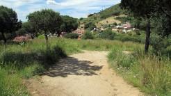 Vigia Trail (192)