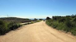 Vigia Trail (20)