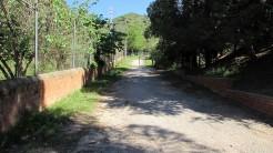 Vigia Trail (200)