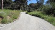 Vigia Trail (202)