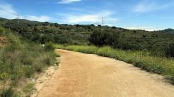 Vigia Trail (22)