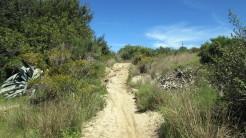 Vigia Trail (25)