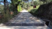 Vigia Trail (3)