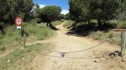 Vigia Trail (39)