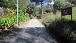 Vigia Trail (4)