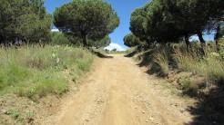 Vigia Trail (40)