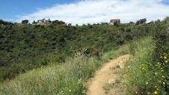 Vigia Trail (50)